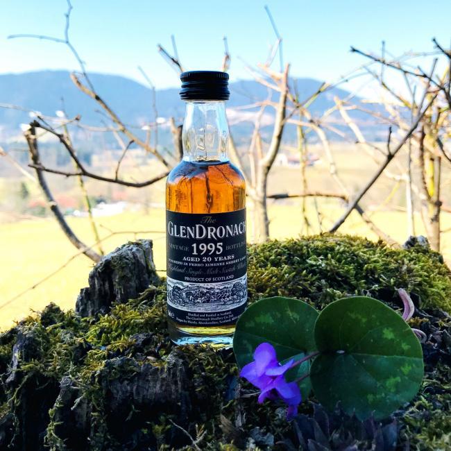 Miniatur Glendronach PX Finish 'Whisky.de exklusiv' - 12er Pack